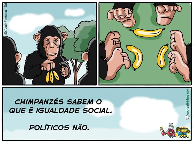 satirinhas-a-diferença-entre-políticos-e-chimpanzés