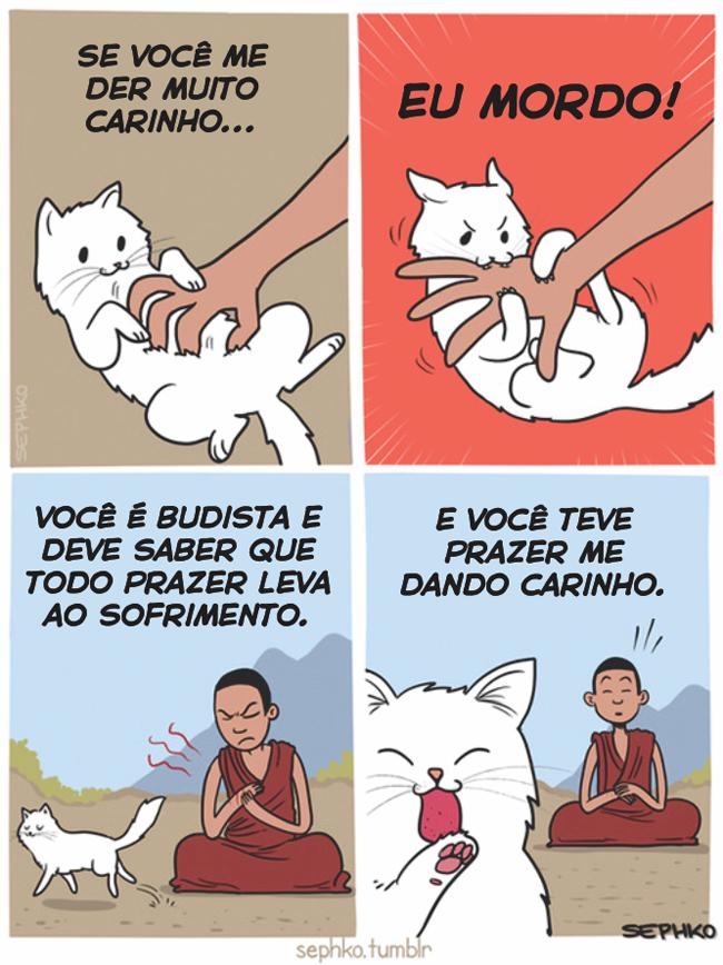 o-gatinho-carinhoso