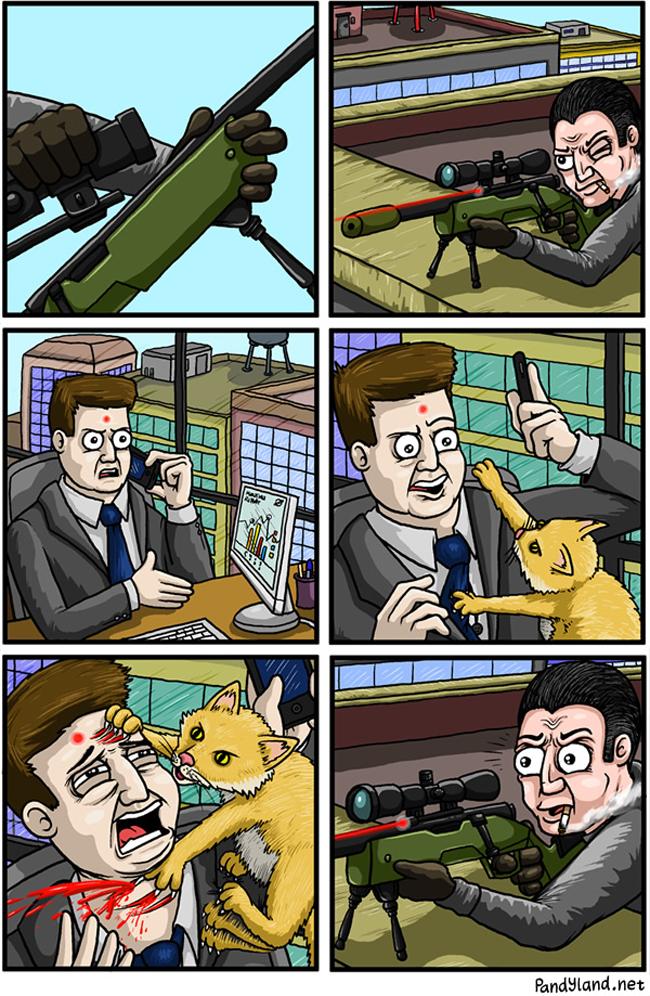 o-gato-assassino