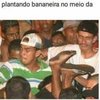 Não dá pra entender algumas coisas que acontecem no Brasil.