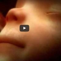 9 meses de gestação em 4 minutos