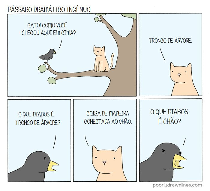 um pássaro ingênuo