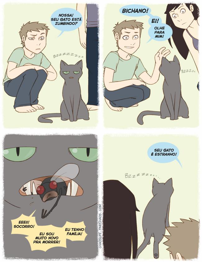 satirinhas-gatos-são-estranhos