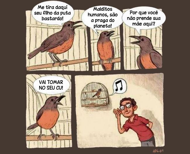 satirinhas-pobre-passarinho