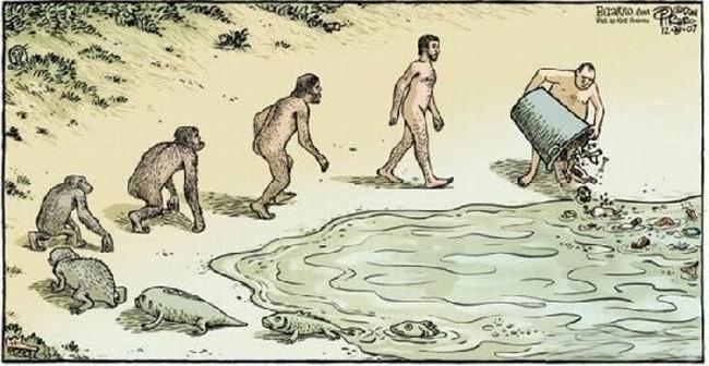 A evolução da espécie humana