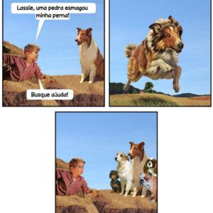 O cão é o melhor amigo do homem!