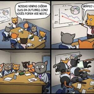O negócio dos gatos