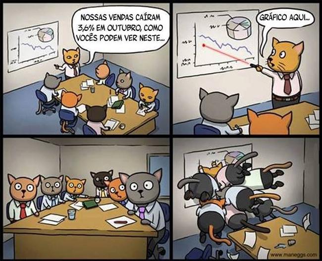 satirinhas-o-negócio-dos-gatos