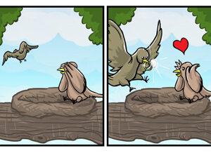 Os caminhos do amor