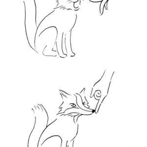 Transformando um gato em raposa