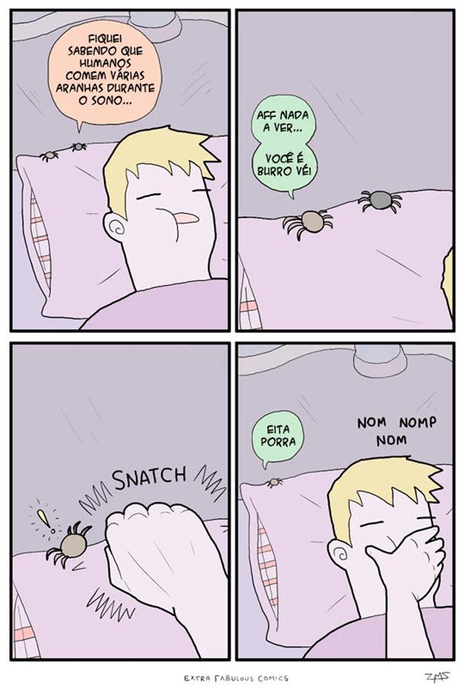 Aranhas têm medo de humanos?