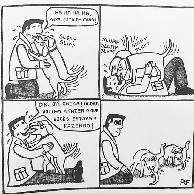 cães-ensinados-sempre-obedecem