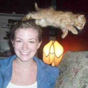 Gatos que atrapalharam fotos que seriam perfeitas