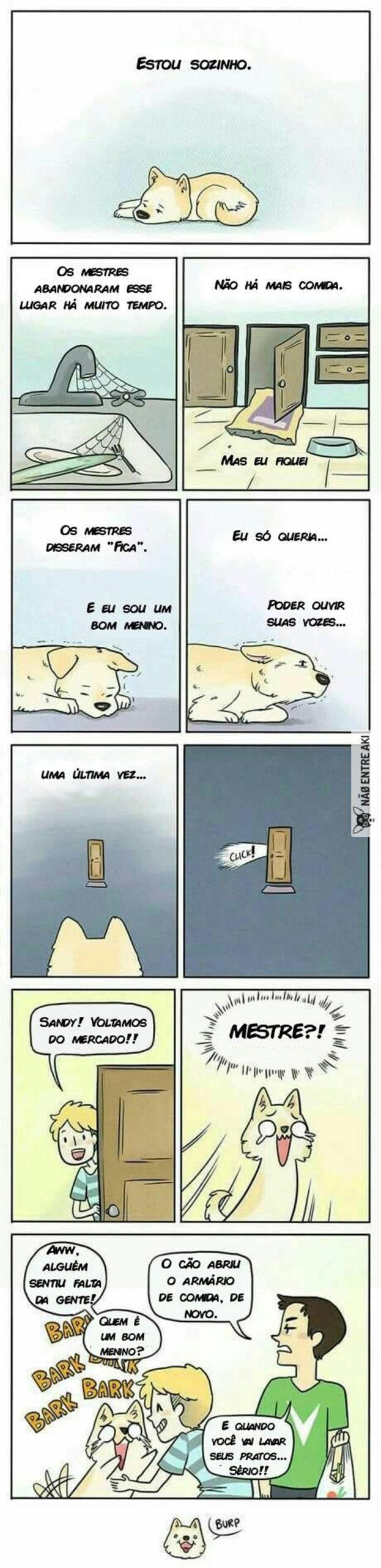 A interminável espera de um cão por seu dono