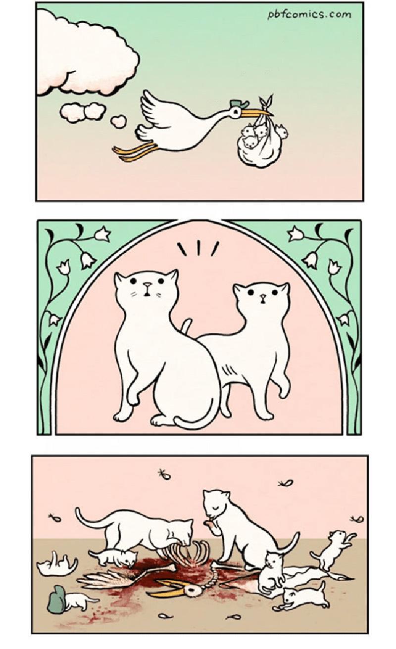 gatos-e-a-cegonha