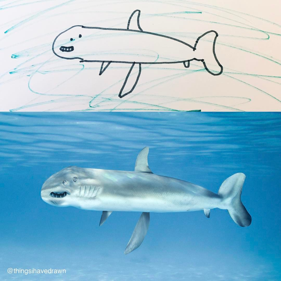 terrível tubarão