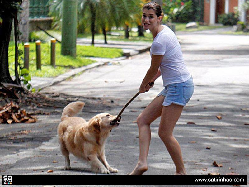 Cão-da-Aline-Moraes
