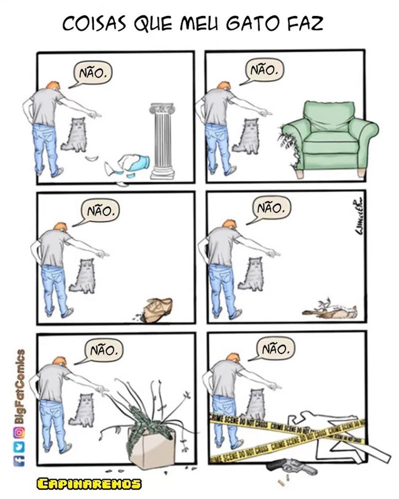 coisas-terríveis-que-um-gato-é-capaz-de-fazer