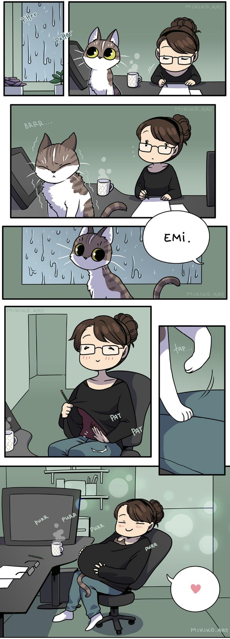 o-aconchego-para-uma-gatinha