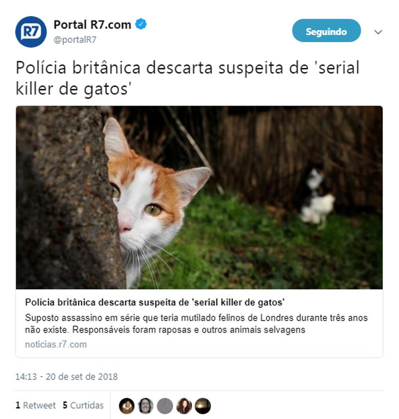 gatos no Twitter