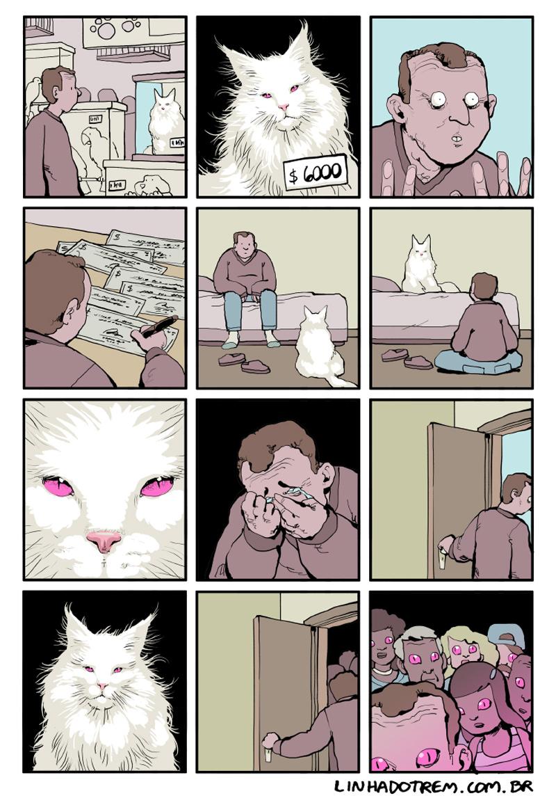 O gato de 6 mil dólares