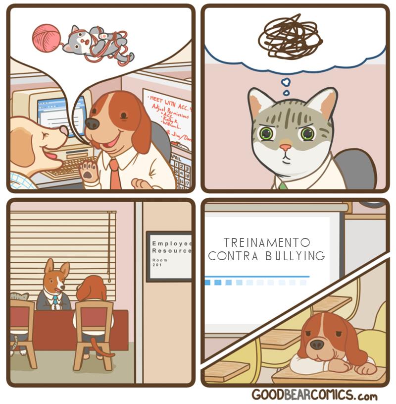 Bullying com gatos