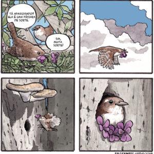 A sabedoria dos pássaros em quadrinhos que vão te deixar sem chão