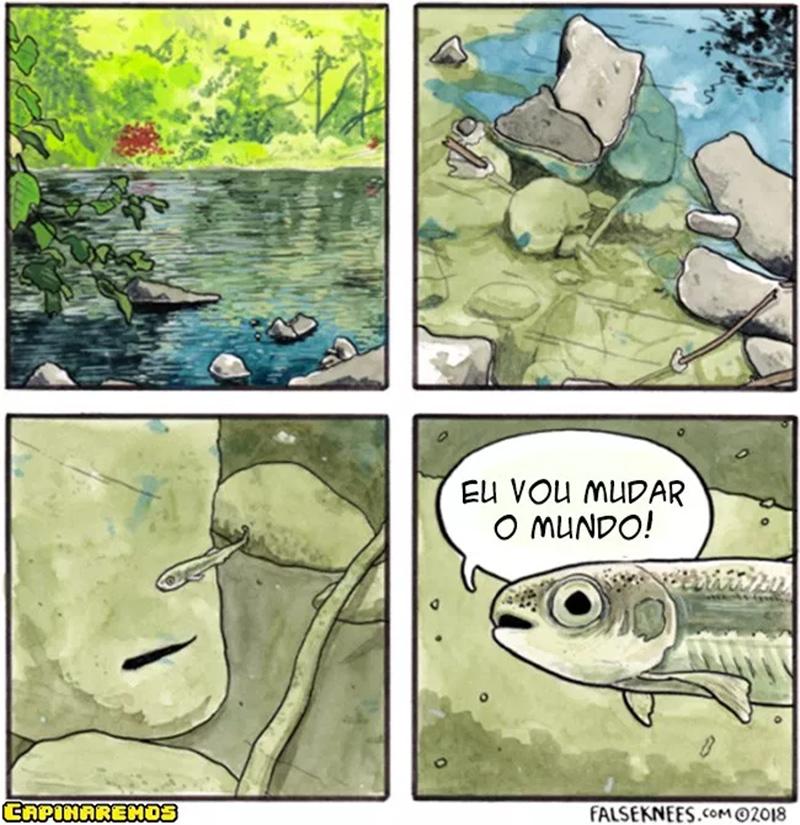 Um peixe de atitude