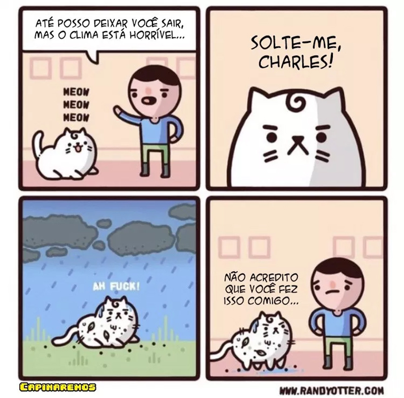 Um humano sacaneando um gato
