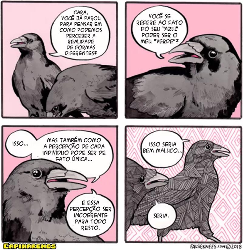 Dois corvos e duas percepções