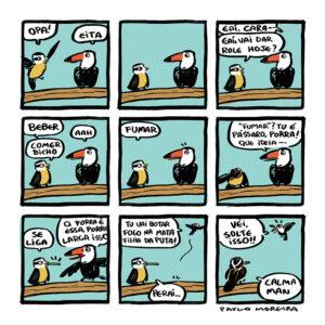 Uma conversa muito louca entre pássaros