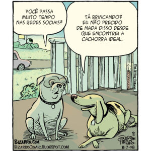 Lições de vida que aprendemos com os cães