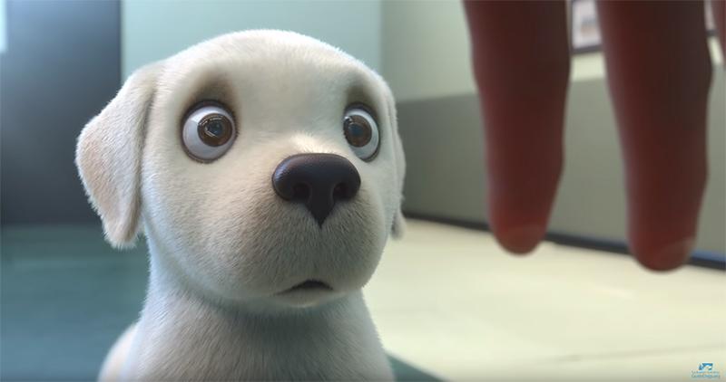 Pip, uma animação sobre um pequeno cão com um grande sonho