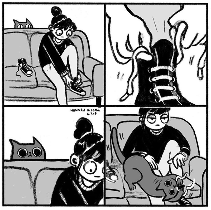 Um gatinho curioso
