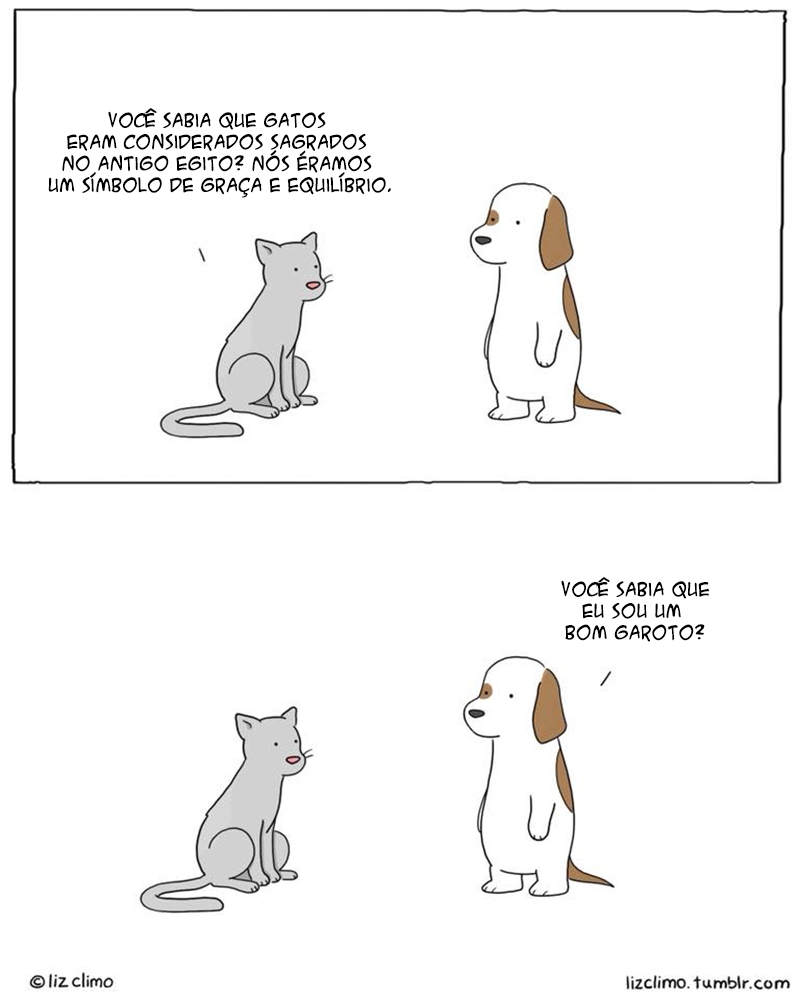 Uma conversa de cão e gato
