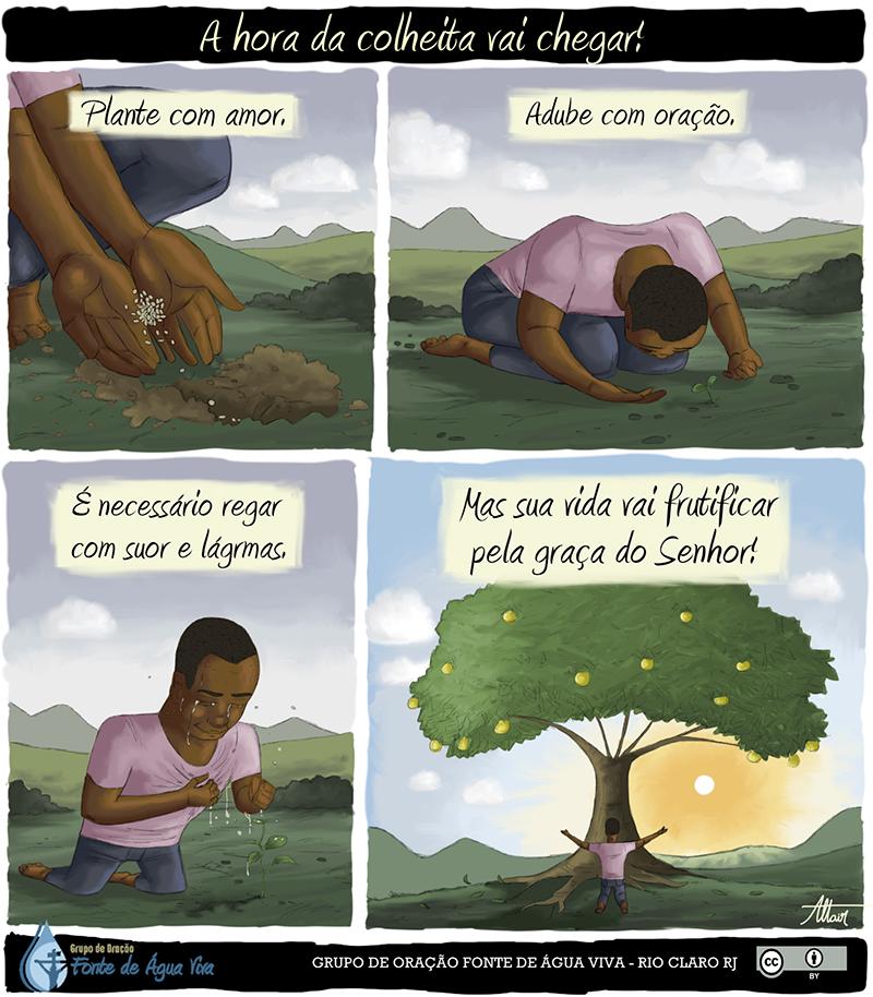 Os frutos da sua vida dependem da maneira como você tem plantado