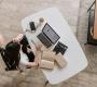 Home office: saiba como tornar essa prática mais produtiva e saudável