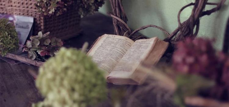 12 benefícios da leitura em nossas vidas